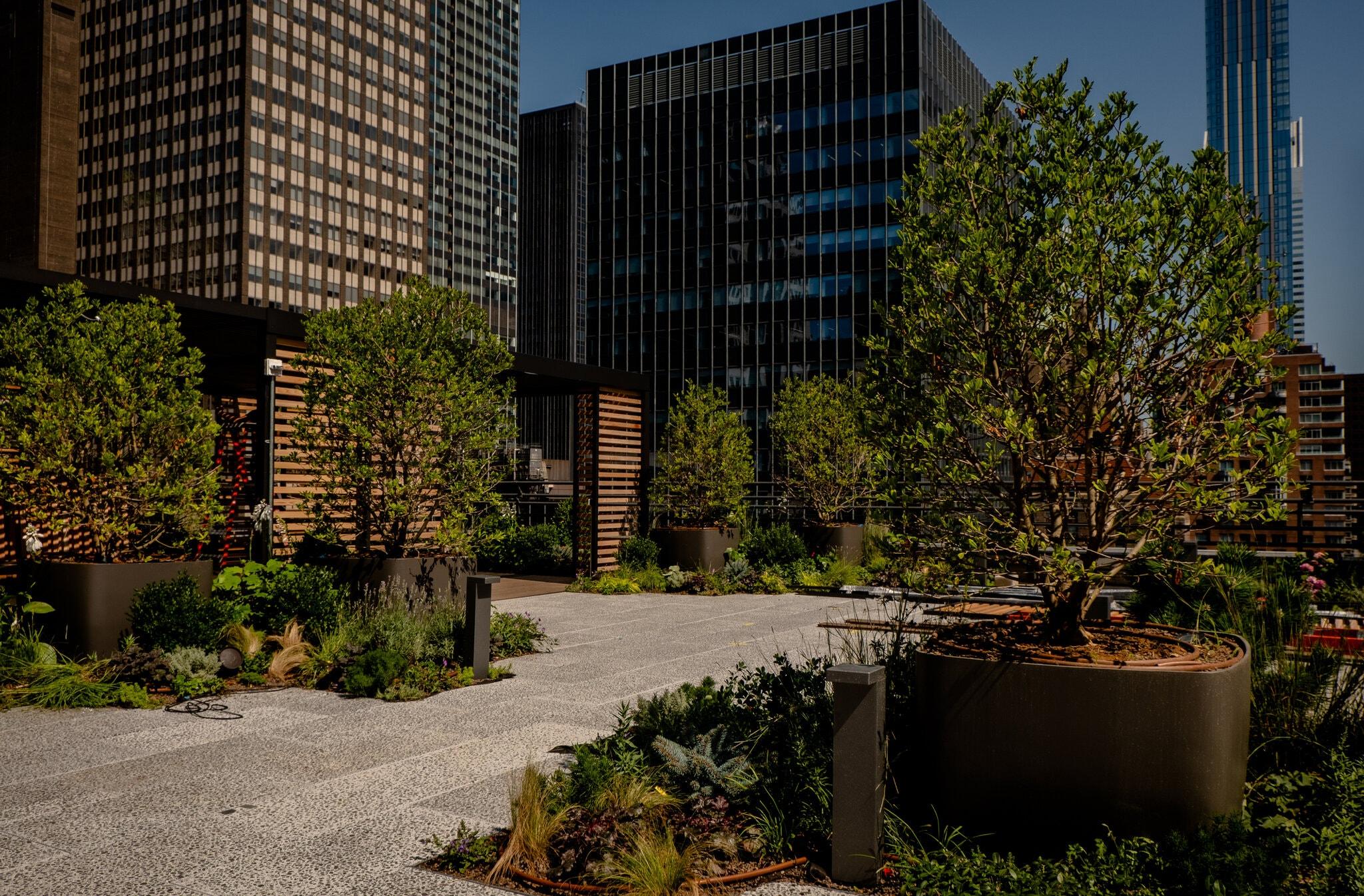 Терраса на крыше одного из офисных зданий в Нью-Йорке. Фото — Hilary Swift / The New York Times.