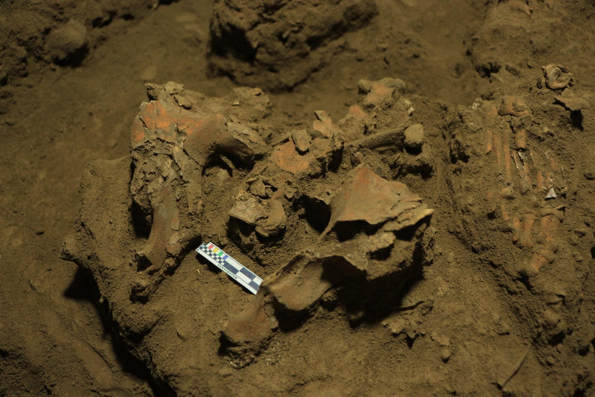 В Индонезии обнаружили ДНК женщины, жившей 7200 лет назад. Почему это важно?