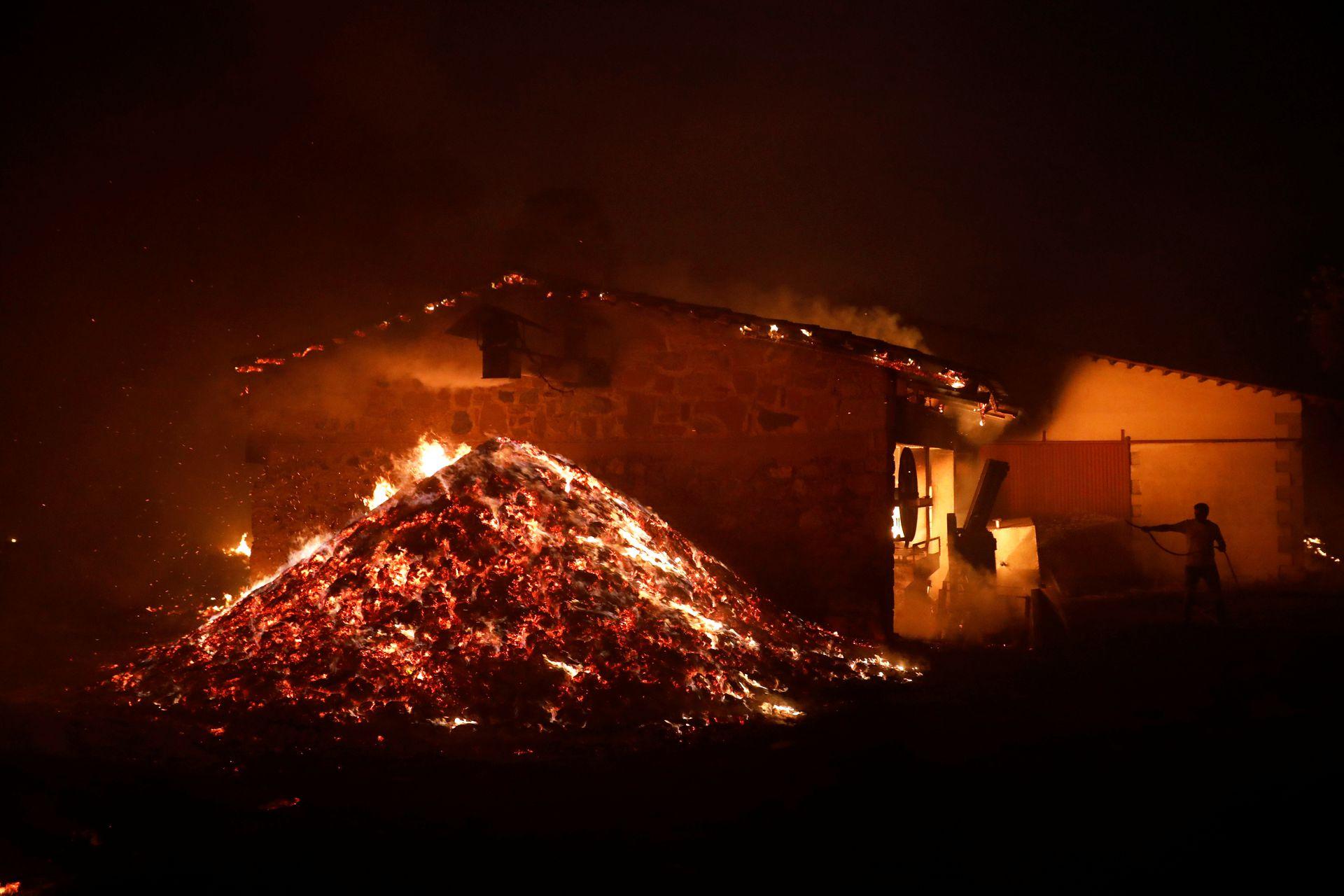 В Греции бушуют пожары. Сгореть может древняя Олимпия