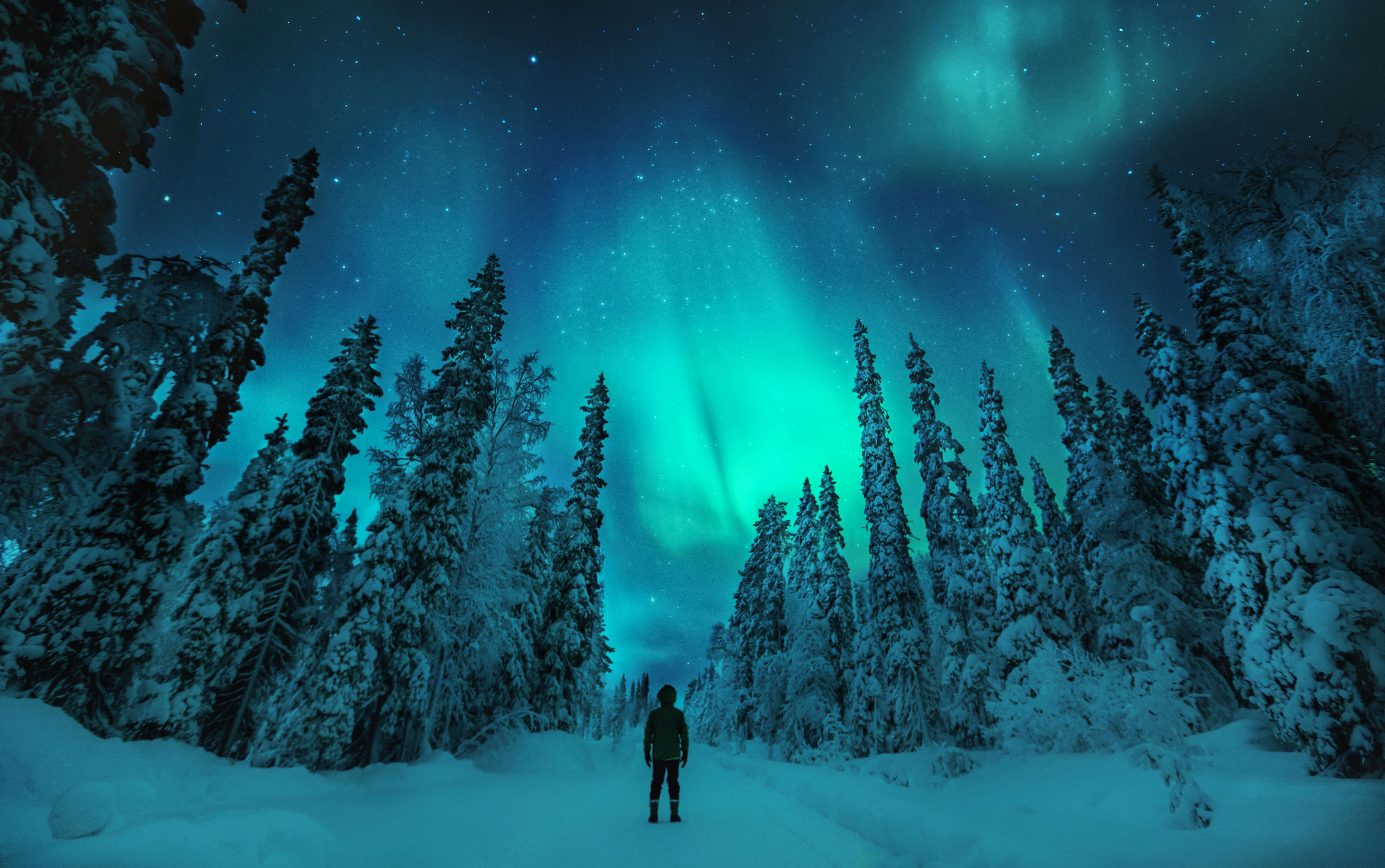 Фото — Visit Finland.