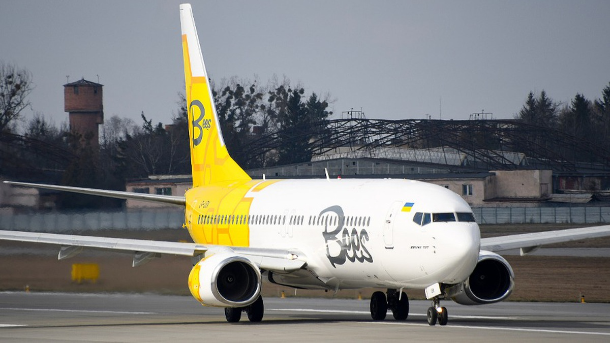 Фото — Bees Airline.