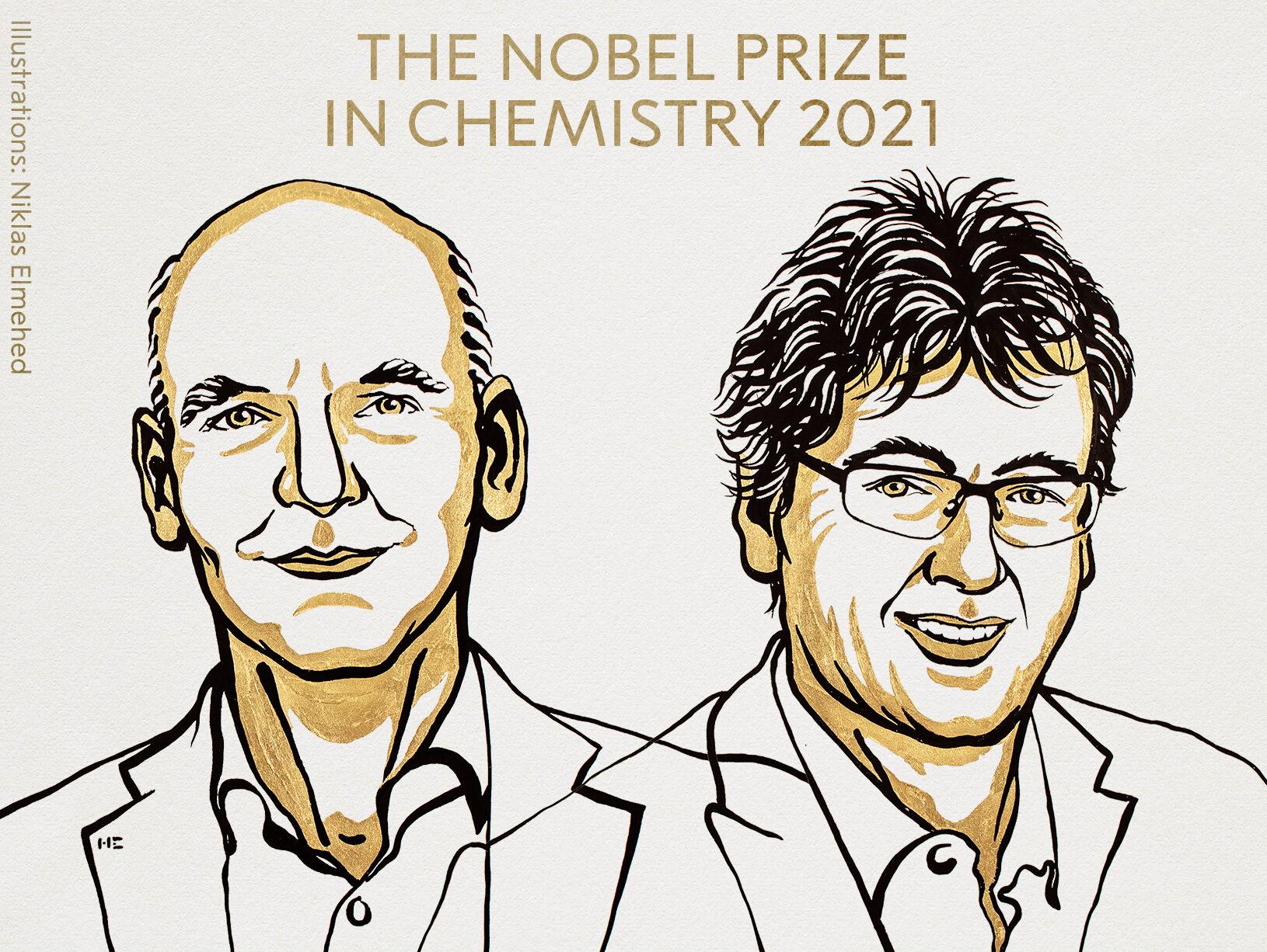 За новые методы синтеза молекул. Нобелевскую премию по химии получили двое ученых из США